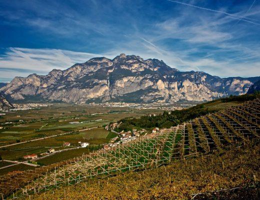 """Piana Rotaliana, """"il giardino vitato più bello d'Europa"""""""