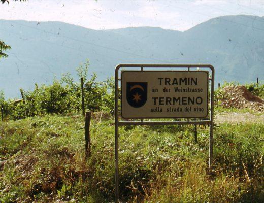 Viaggio a Termeno, nella patria del Gewürztraminer