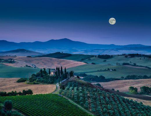 Vino e Luna: come le fasi Lunari influenzano la vendemmia e l'imbottigliamento