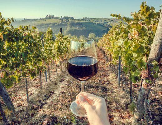 Vini biodinamici, cosa sono e perché sono il futuro del settore vitivinicolo